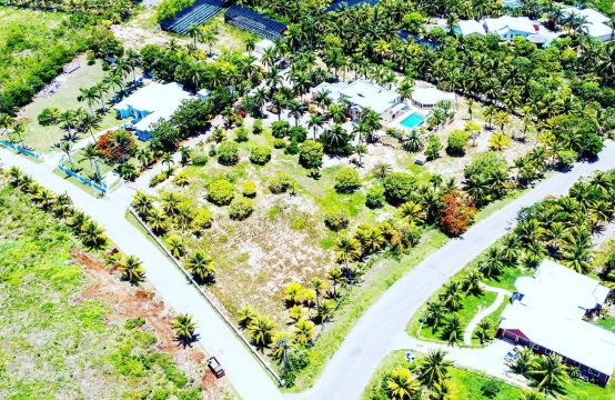 Tiverton Estate